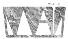 waiz-logo